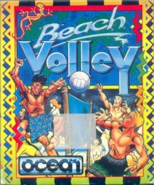 Portada de la descarga de Beach Volley