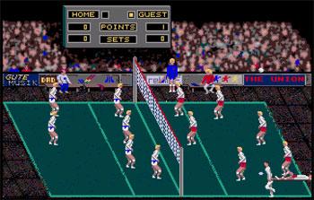 Imagen de la descarga de Volleyball Simulator