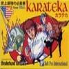 Juego online Karateka