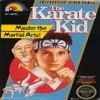 Juego online The Karate Kid