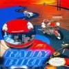 Juego online Rally Bike (NES)