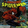 Juego online The Amazing Spider-Man (PC)