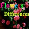 Juego online Flowers Differences
