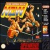 Juego online Natsume Championship Wrestling (Snes)