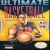 Juego online Ultimate Basketball