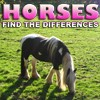 Juego online Differences: Horses