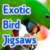 Juego online Exotic Bird Jigsaw Tournament