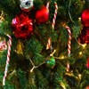 Juego online Jigsaw: Christmas Tree Closeup