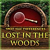 Juego online Lost in the Woods (Spot the Differences Game)