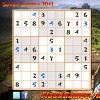 Juego online Super Sudoku 2011
