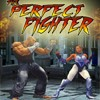 Juego online The Perfect Fighter 1-0