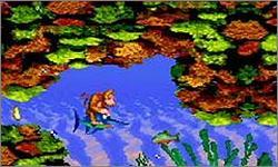 Imagen de la descarga de Donkey Kong Country