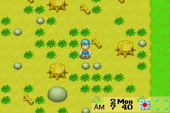 Imagen de la descarga de Harvest Moon: Friends of Mineral Town