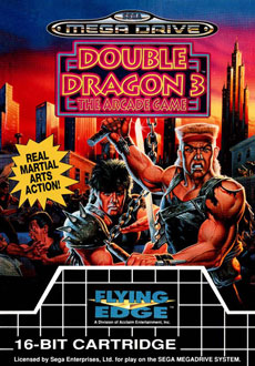 Portada de la descarga de Double Dragon 3 – The Arcade Game