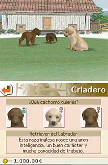 Imagen de la descarga de Nintendogs: Labrador and Friends