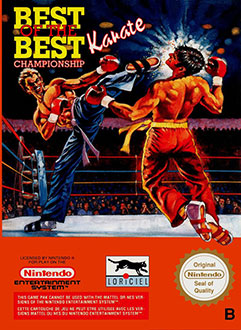 Juego online Best of the Best: Championship Karate (NES)