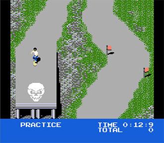 Pantallazo del juego online Skate or Die (NES)
