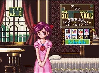 Imagen de la descarga de Princess Maker: Legend of Another World